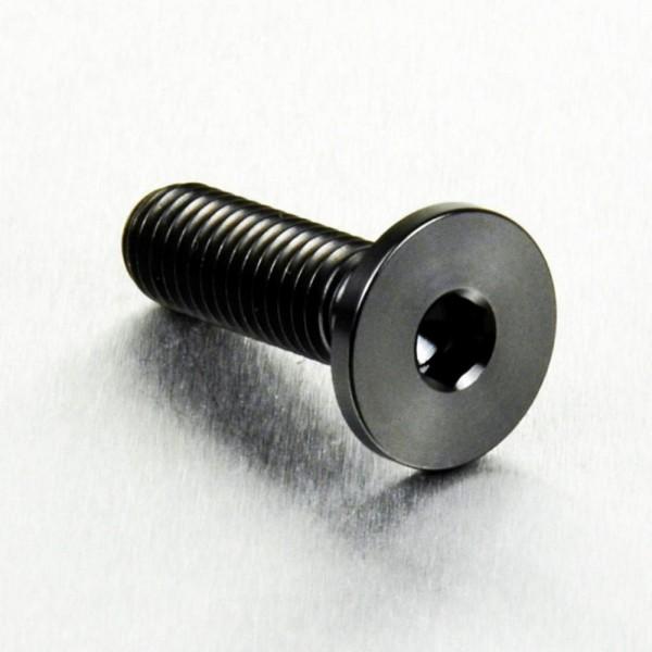 Titan Bremsscheiben Schraube schwarz M8x1,25x26mm BMW