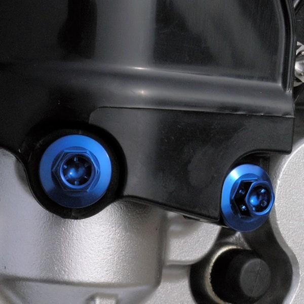 Aluminium Race Spezial Verkleidungsschraube - M6