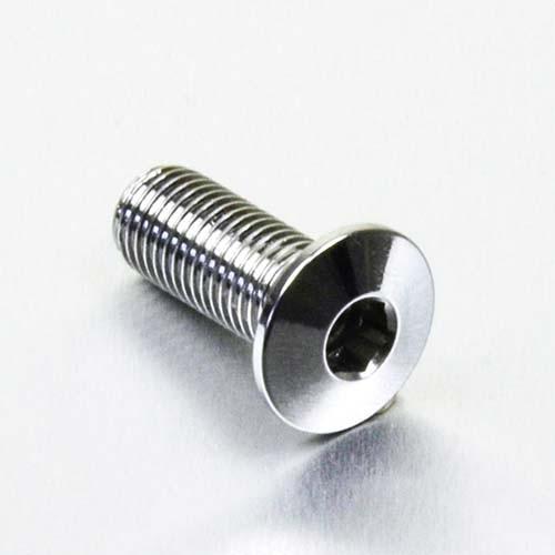 Edelstahl A4 Linsenkopf Schraube M10 x (1.25mm) x 25mm
