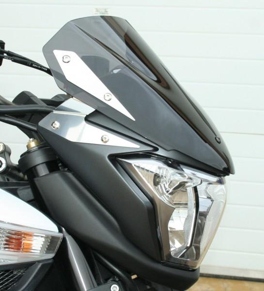 Windschutzscheibe für Suzuki B-King