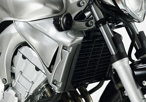 Bodystyle Kühlerseitenverkleidung - unlackiert - Yamaha FZ6 S2 (2009-2010)