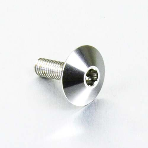 Edelstahl A4 Linsenkopf Schraube M6 x (1.00mm) x 16mm