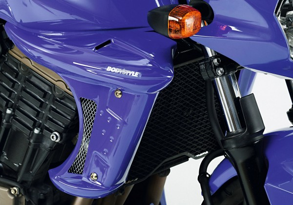 Kühlerseitenverkleidung - unlackiert - Kawasaki Z750 (2004-2006)